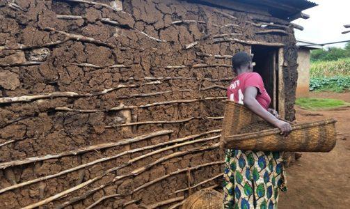 Smallholder Farming Tanzania BGE